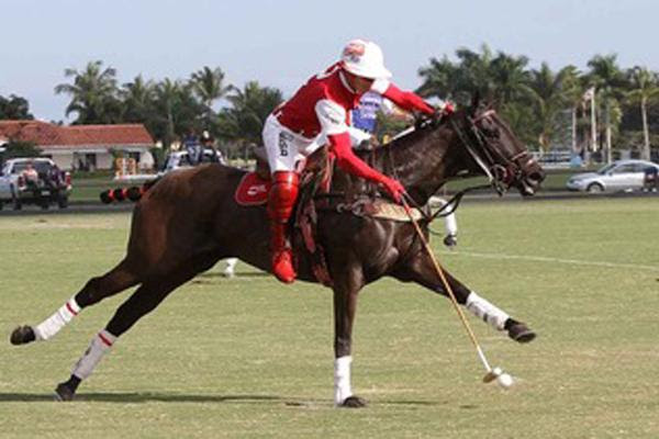 "They Said I'd Never Play Polo Again""—But Sugar Is Back"
