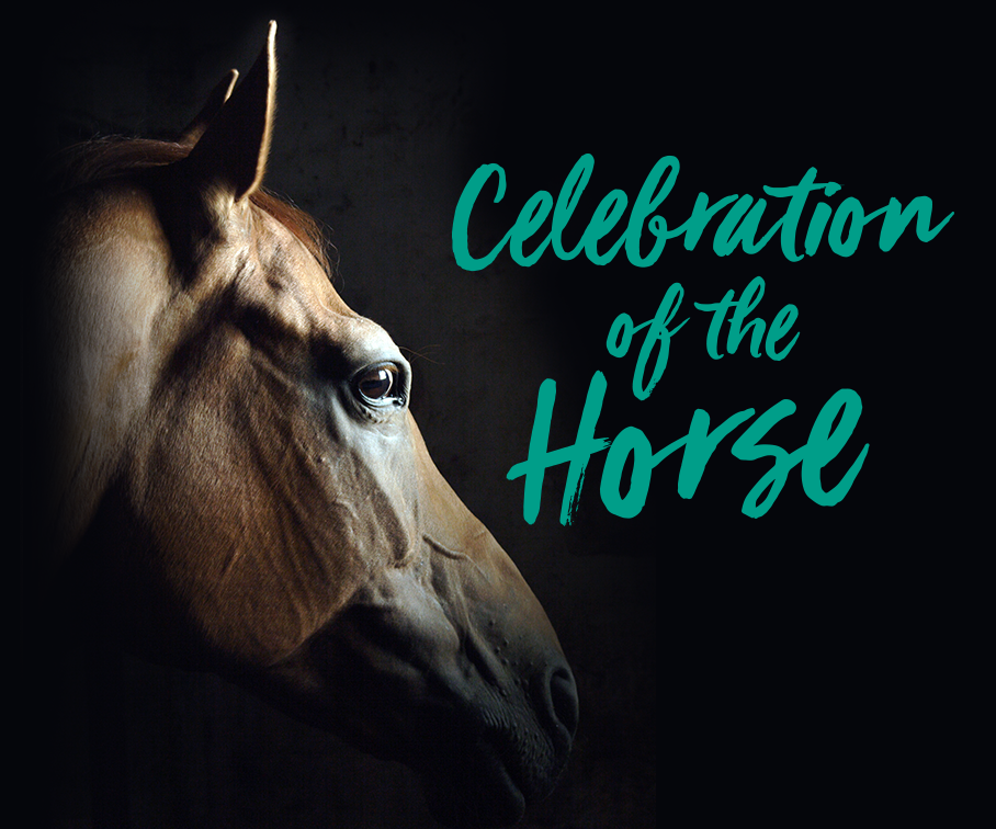 Celebrate Colorado Equestrians June 1 - 3 at Denver Polo Club