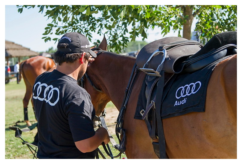 Pilara International Polo Tournament, La Espadaña Audi Autovisiones polo team